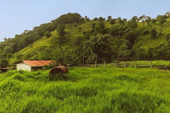 Bajos del Toro照片