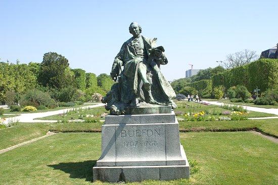 Statue de Buffon