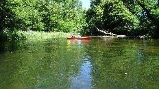 As Tours - Kayak Expeditions & Rental Image