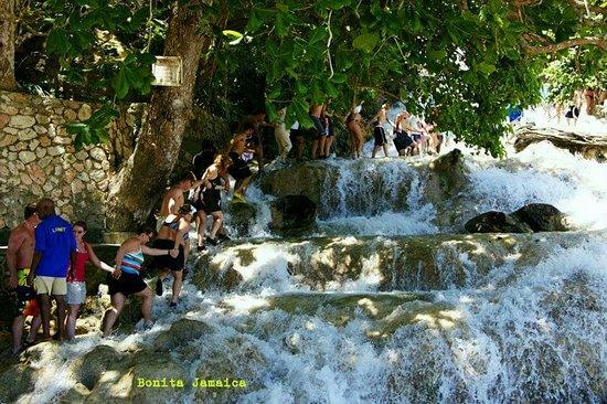 Falmouth, Jamaica: Dunns River waterfalls