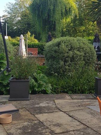 Aylesford, UK: Garden