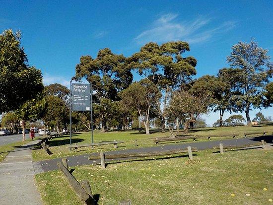 Pinewood Reserve