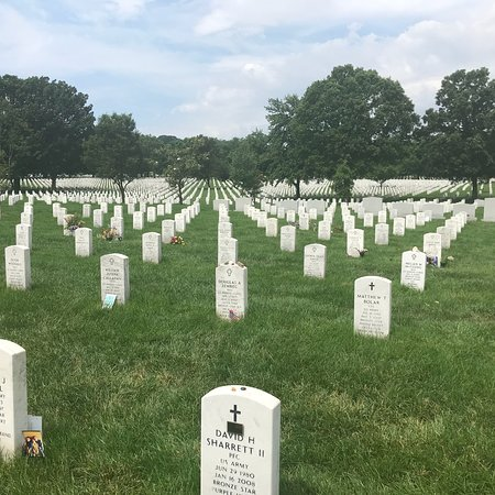 Arlington National Cemetery: photo7.jpg