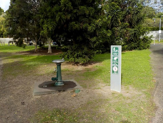Kooyong, Australie : Water and dog rules - McAlpine Oval