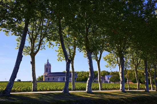 Bordeaux to Medoc Wine Region Tasting...