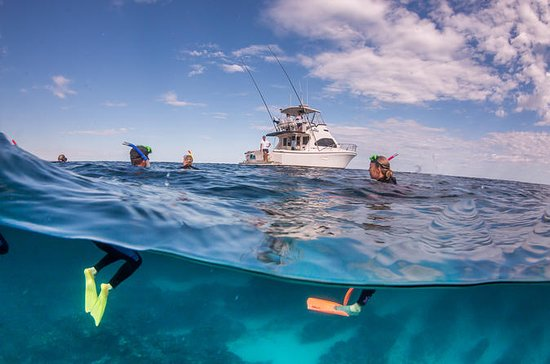Exclusive Ningaloo Adventure Charter ...