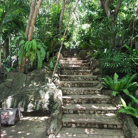 View Point Resort: photo4.jpg