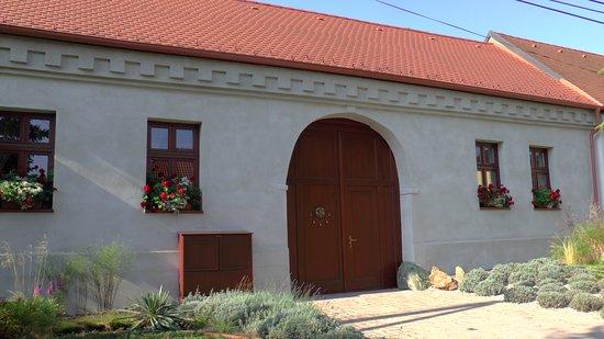 Dol'any, Slovakia: Historická brána
