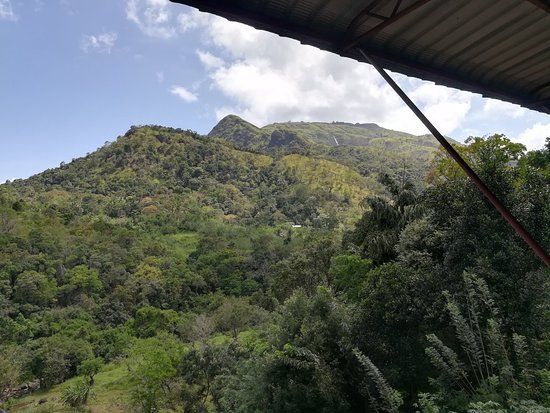 Belihuloya, Sri Lanka: IMG_20180612_131128_large.jpg