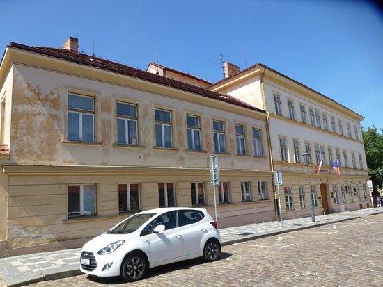 Jedlicka Institute