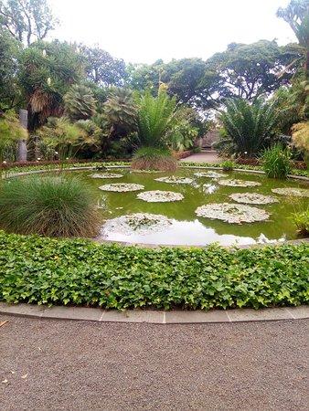 Jardin Botanique (Puerto de la Cruz) : 2018 Ce qu'il faut ...