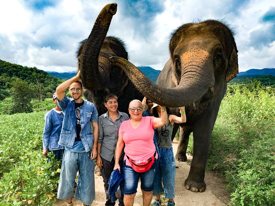 Pai Elephant Sanctuary
