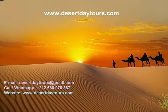 ‪Desert Day Tours‬