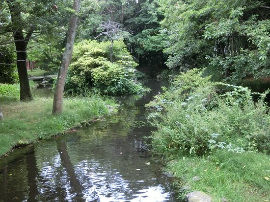 Foto de Gempeigawa River