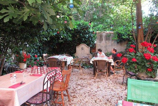 dans le jardin avec le chat - Photo de L\'Ancienne Épicerie ...