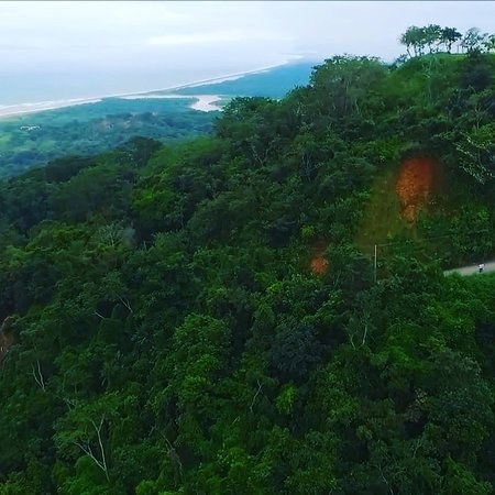 Carara, Costa Rica: IMG_20180320_221747_375_large.jpg