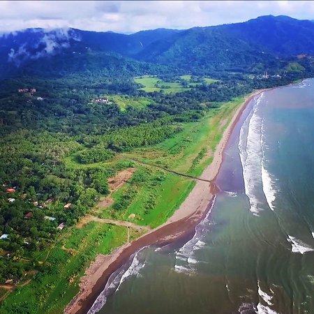 Carara, Costa Rica: IMG_20180320_221333_432_large.jpg
