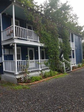Charleston's NotSo Hostel Picture