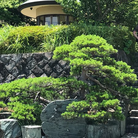 Akao Herb and Rose Garden Photo