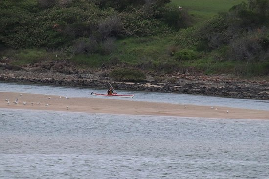 Minnamurra, Australie : Someone was in a kayak