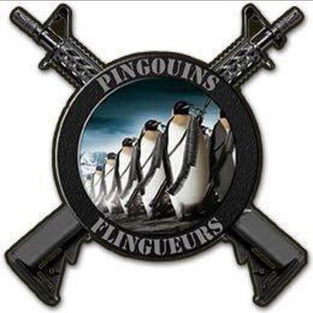 Les Pingouins Flingueurs