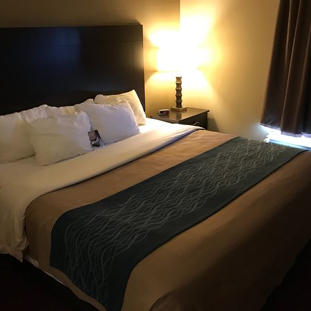 Comfort Inn West: Room 102