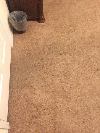 Caribe Cove Resort Orlando: Dirty carpet