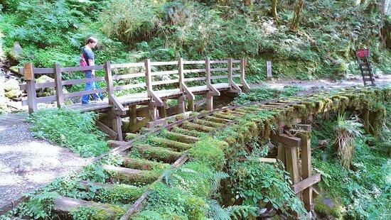 Jian Qing Huai Gu Trail