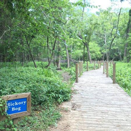 Mercer Arboretum Botanic Gardens Humble Lo Que Se
