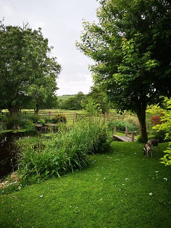 Bolton by Bowland, UK: IMG_20180615_072914_large.jpg