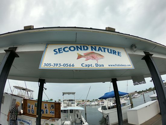 Best charter boat on the slip. - Picture of Key West Fishing ...