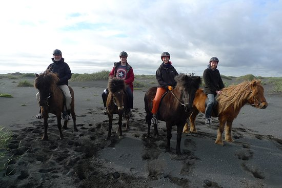 Horseridingtours.is: Me and my family on the beach with our horses.