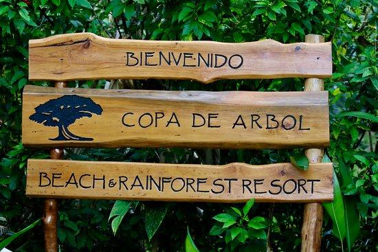 Copa de Arbol Beach and Rainforest Resort Resmi