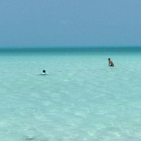 Taylor Bay Beach: photo1.jpg