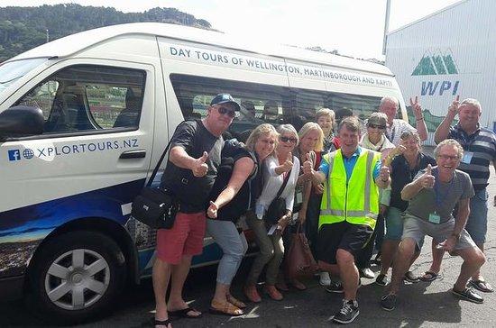 Visite guidée de Wellington