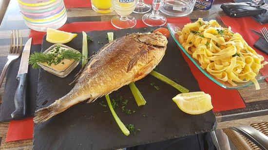 Le Provençal : Excellente daurade à la plancha ..super accueil!!