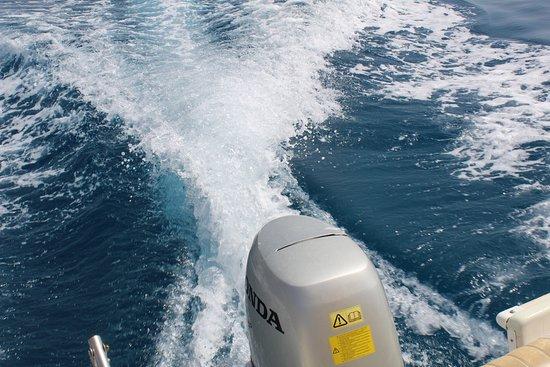 Dimitris WaterSports: MOTOR BOAT
