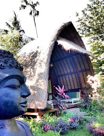 Kelapa Cottage: kelappa