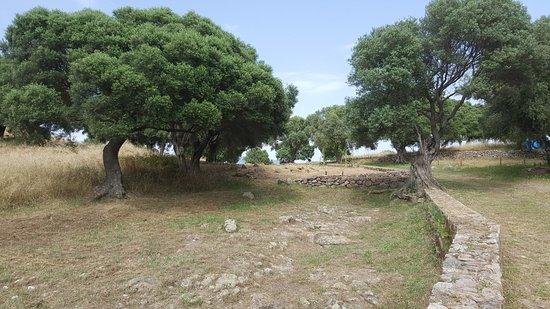 L'insediamento di Pani Loriga