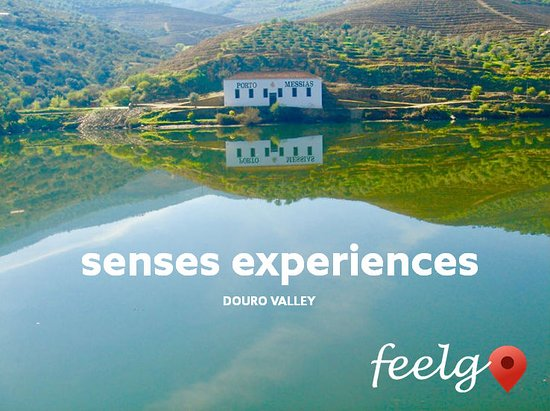 Maia, โปรตุเกส: Douro Valley | Sense Experiences