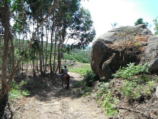 Midoes, Portugal: Horse riding-Reiten-equitation-paardrijden-equitação-hipismo-Portugal by horse