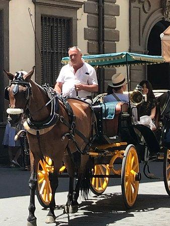 Horse & Carriage Tour صورة فوتوغرافية