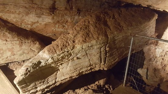 Berryville, AR: Cosmic Cavern
