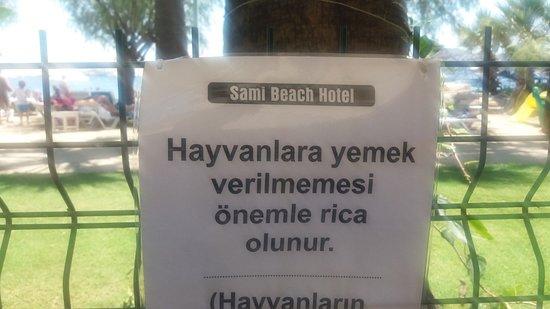 Sami Beach Hotel: Burası oteli yoldan ayıran bahçe çiti.. dışarda verilen yiyeceklere yasak koymaya ne hakları var