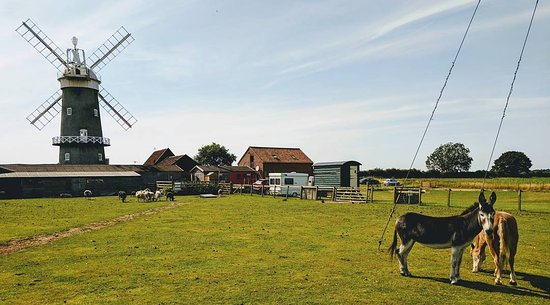 Bircham Windmill: View from the campsite