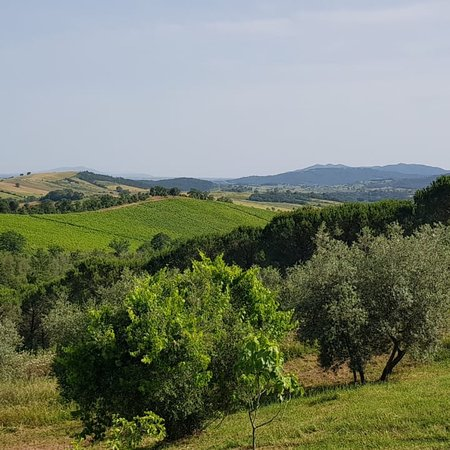 Tenuta Casteani farmhouse, wine & events in Tuscany Maremma照片