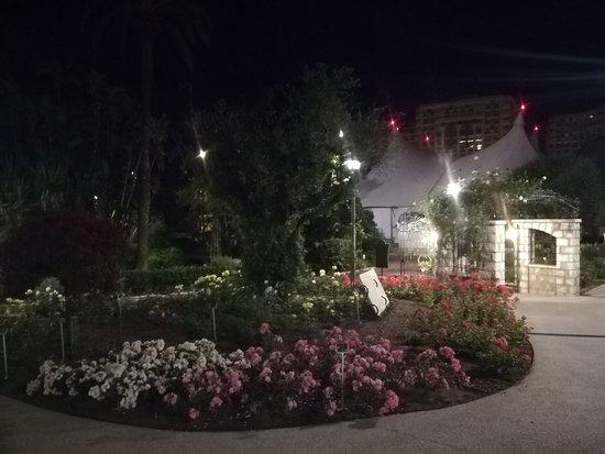 Princess Grace Botanical Garden : Foto 5