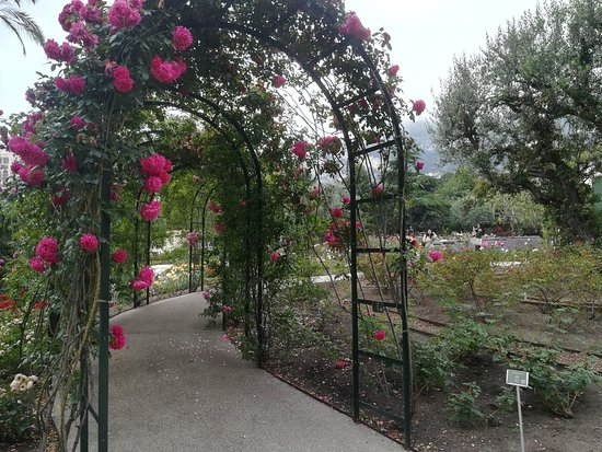 Princess Grace Botanical Garden : Foto 7