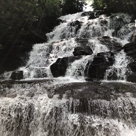 Vogel State Park: photo1.jpg
