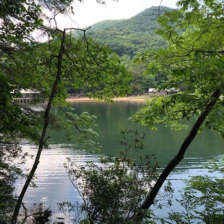 Vogel State Park: photo3.jpg